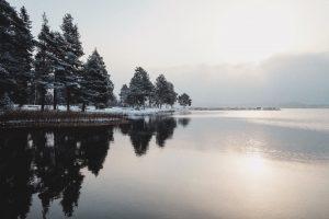 En sjö om vintern, med solen som skiner genom moln och träd på strandkant till vänster
