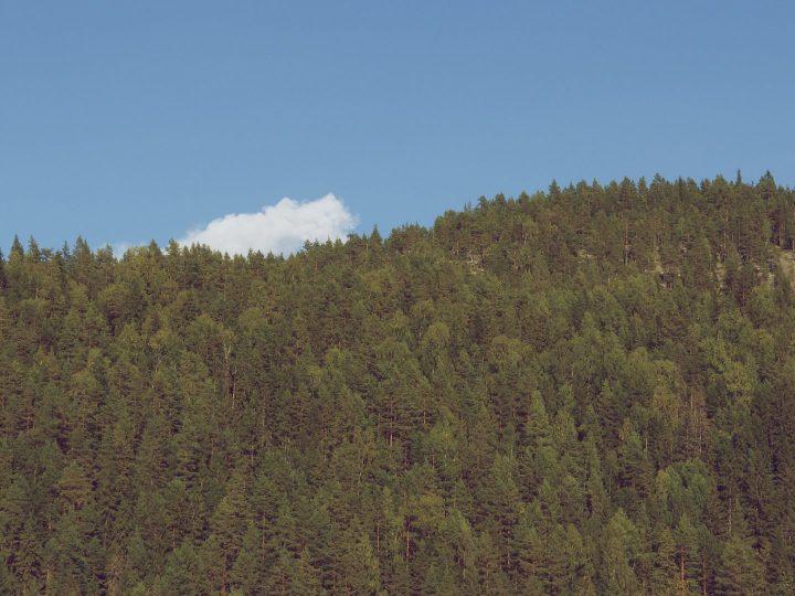 Berg, skog och ett ensamt moln