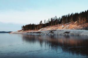 En kurvig väg som slingrar sig vid vattnet och en skog i bakgrunden