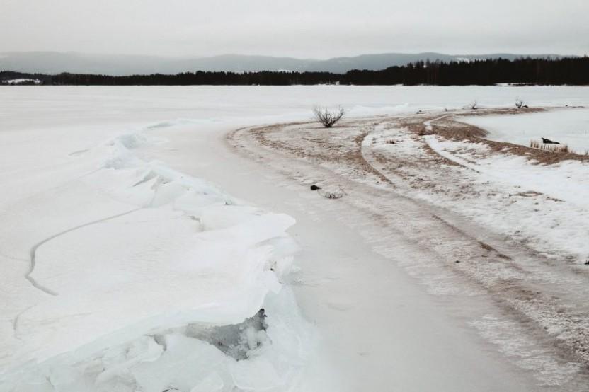 En frusen sjö och en el av en strandkant med buskar