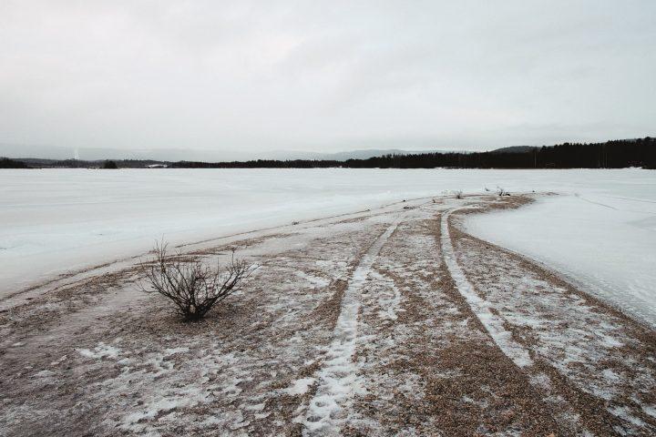 En frusen sjö och en el av en strandkant med buskar och hjulspår i sanden