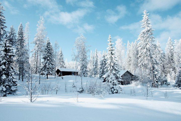 En snöklädd liten stuga bland snötäckta träd
