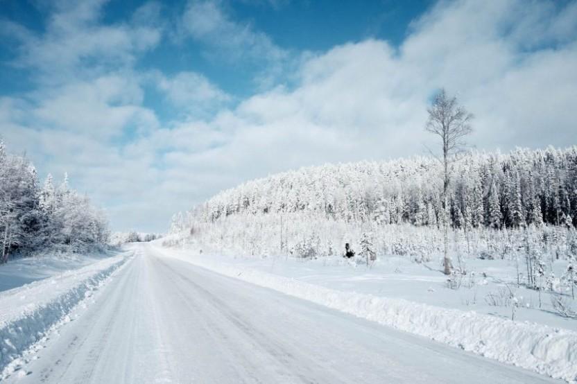 En snöig vinterväg till vänster och snöklädd skog till höger
