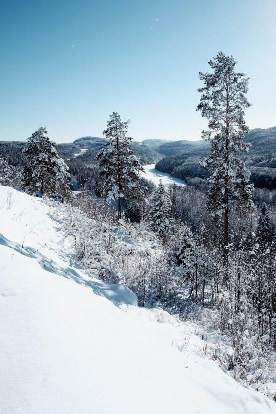 Vinterutsikt över en dalgång med en älv och snöklädda träd i förgrund